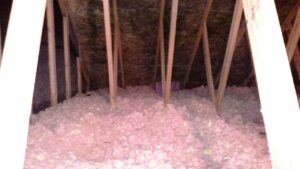 Before Pictures of Mold in a home in the attic CCS Property Services