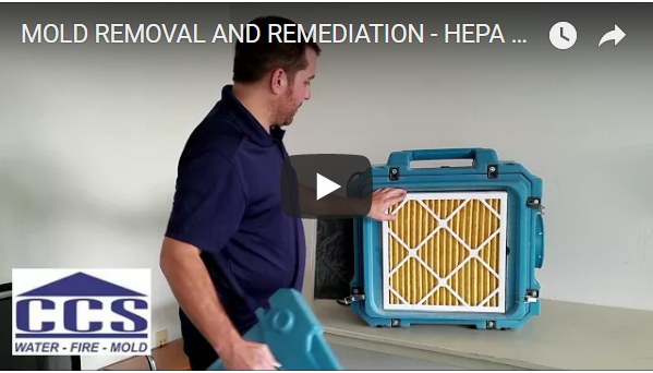mold removal and remediation tools hepa filter 500