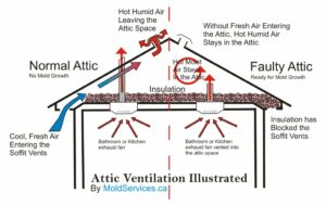 proper attic venting - attic mold removal in appleton and green bay wisconsin and vicinities