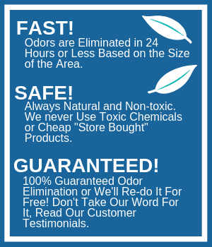 Safe effective odor remover