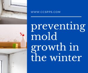 preventing mold growth in the winter